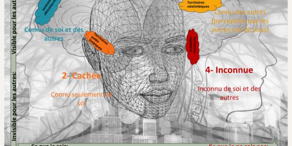Imago, multipotentiels, Entrepreneur entreprenant, zone du saboteur
