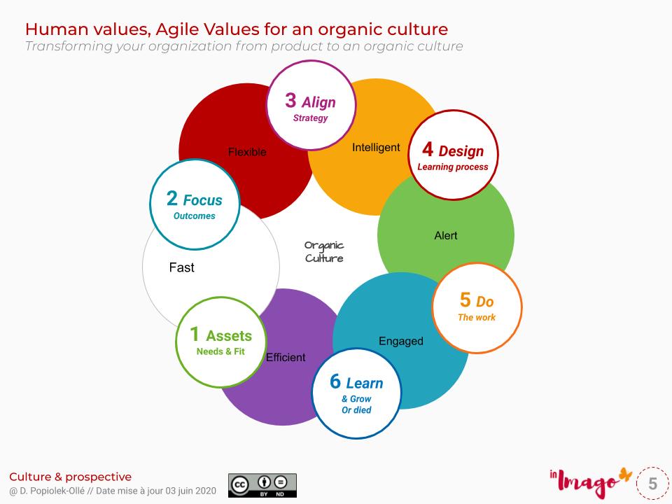 Management organique, management stratégique par la valeur, culture organique