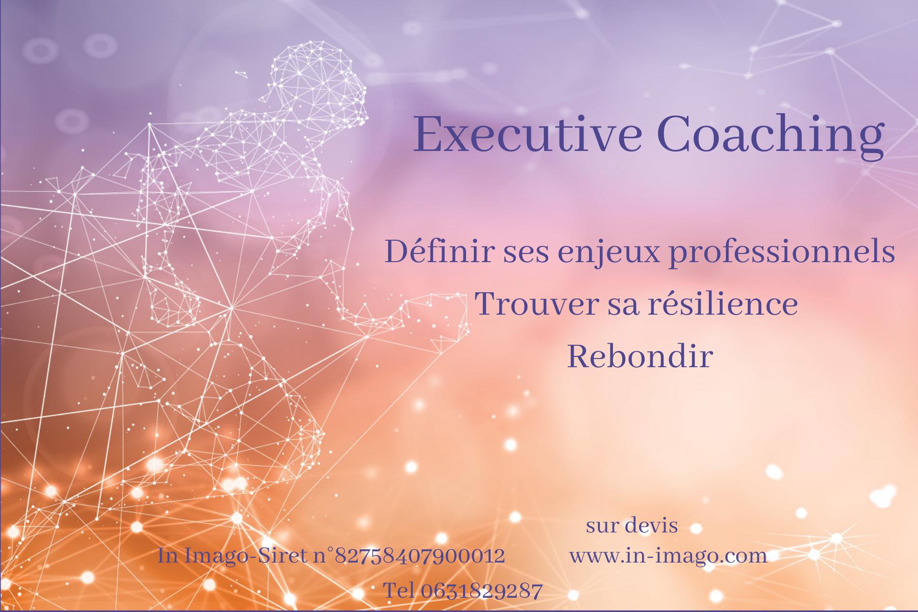 Executive coaching-Coaching de dirigeant