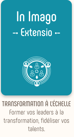 Accompagner, Extensio, transformer les organisations