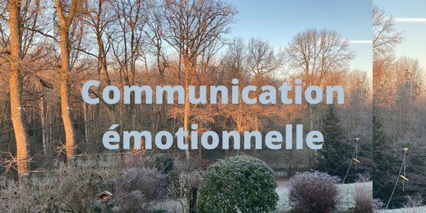 Communication émotionnelle, management stratégique, accompagner, transformer, emotionnal management, emotionnal communication