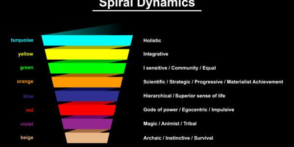 Spirale dynamique, Spiral dynamics
