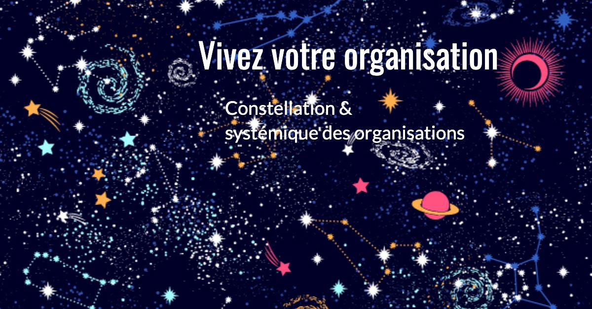 Constellation systémique des organisations